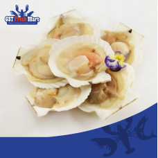 FROZEN HALF SHELL SCALLOP WITH ROE 1KG 冷冻半壳带子-厚壳